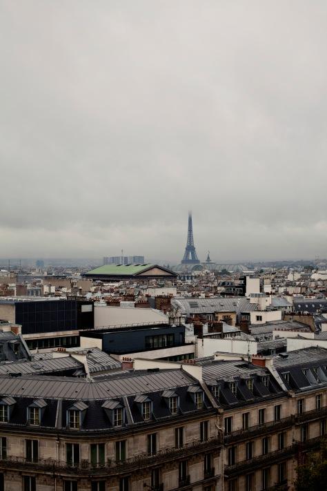 Paris_20121008_0226_1