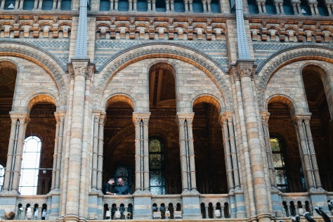 London England Natural History Museum